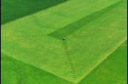 Aerial view of an Albion Park farm