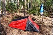 Camping in the Deua National Park