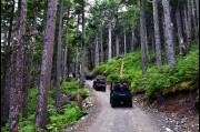 Heading along the Takshanuk Mountain Trail, Haines, Alaska