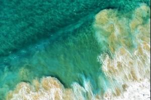 Port Kembla Beach, Illawarra