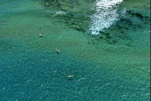 East Corrimal Beach, NSW