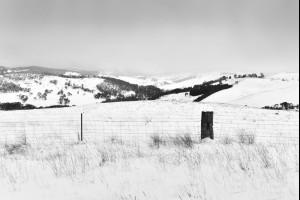 Fields of Oberon