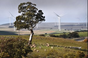 Crookwell Country