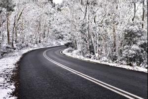 Wintery White