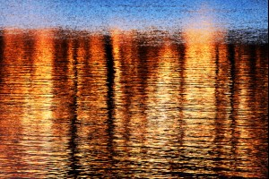 Gold Reflections