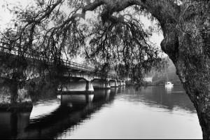 The Nelligen Bridge