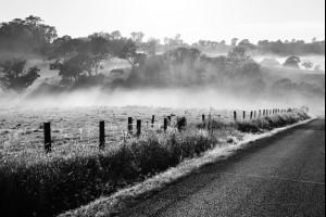 The Tilba Misting
