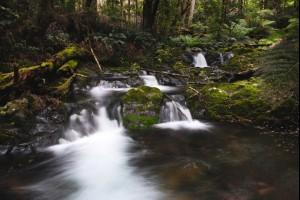 Cascades of Beauty