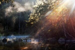 Bursting Light