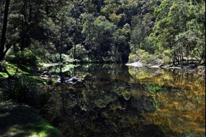 Deua River Reflections