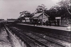 Illawarra Historical Photos
