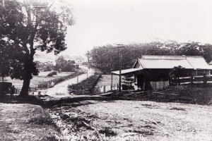 Main Road, Old Bulli