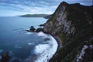 Cold Wild Coast