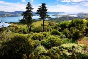 Views of Otago