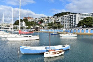 The Boat Harbour
