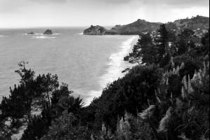 Kiwi Coast