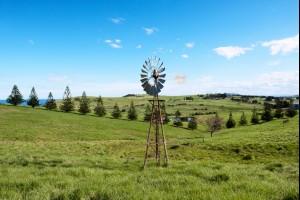 That Windmill