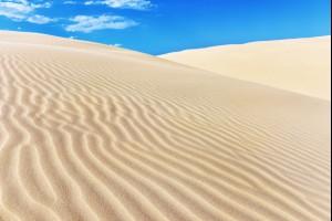 Image result for sand dunes sydney