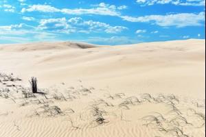 Like a Desert