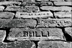 The Bulli Brick