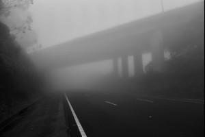Bulli Fog