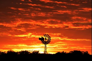 An Outback Sunrise