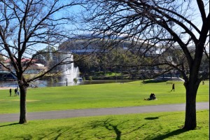 Adelaide Park Life
