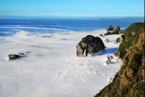 Horse Head Coast
