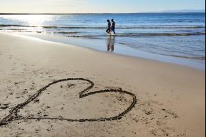 Love Shoalhaven