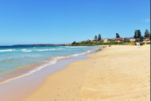 Sunny Shellharbour