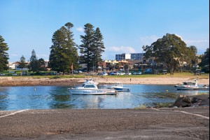 The Shellharbour