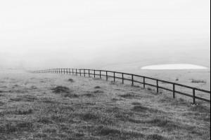 Robertson Mist