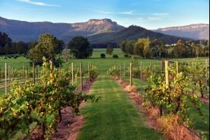 The Kangaroo Valley