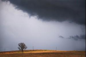 The Light Storm
