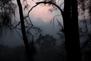 A Smokey Morning