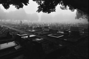 That Eerie Fog