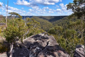 Valleys of the Woronora