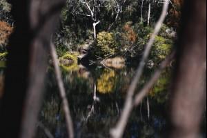 Lake of Reflections