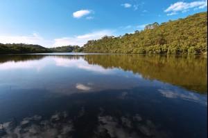 The Bonnet Bay