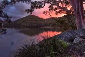 Banks of the Woronora