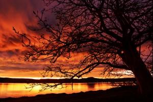 Sunset Divine