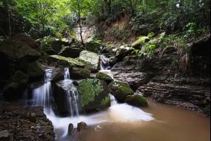Cool Escarpment