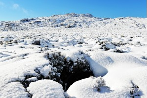 Hole in the Snow