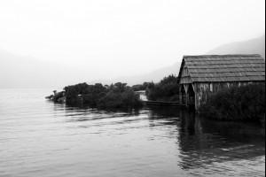 Dove Lake Fog