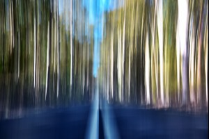 Abstract Photography Gallery