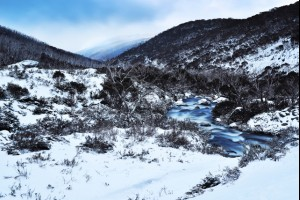 Snowy Mountains GALLERY