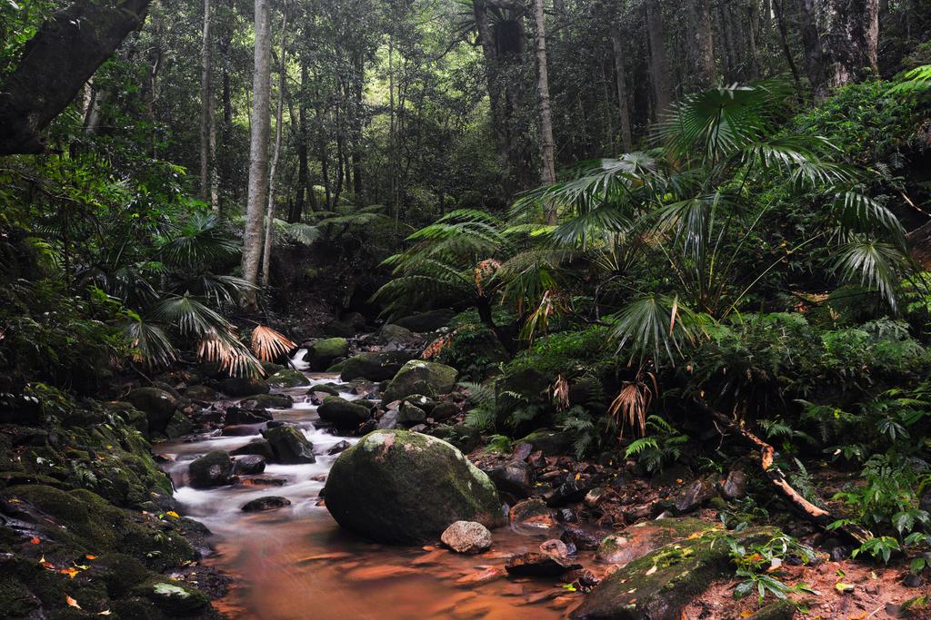 Illawarra Adventure Tours